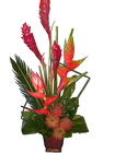 EXOTICS  from Boulevard Florist Wholesale Market