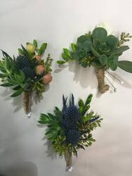 Thistle & Succulent from Boulevard Florist Wholesale Market