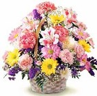 Basket of Cheer from Boulevard Florist Wholesale Market