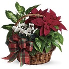 Holiday Homecoming Basket from Boulevard Florist Wholesale Market
