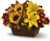 Golden Day's Basket from Boulevard Florist Wholesale Market
