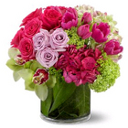 New Sensations from Boulevard Florist Wholesale Market
