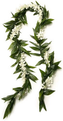 Lei Deluxe Meile - White from Boulevard Florist Wholesale Market