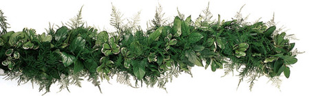 Garland Fresh Salal, Pittosporum & Plumosa from Boulevard Florist Wholesale Market