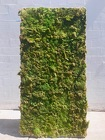 Rental - Moss Wall Panel from Boulevard Florist Wholesale Market