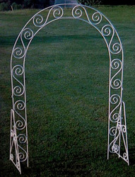 Arch - Standard from Boulevard Florist Wholesale Market