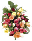 Roses Imported  40cm  from Boulevard Florist Wholesale Market