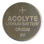 Acolyte - Battery from Boulevard Florist Wholesale Market