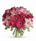 A Little Pink Me Up from Boulevard Florist Wholesale Market
