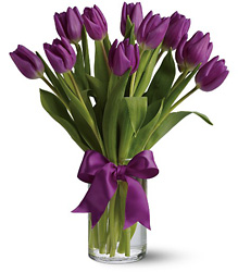 Passionate Purple Tulips from Boulevard Florist Wholesale Market