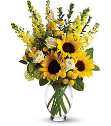 Here Comes The Sun by Teleflora from Boulevard Florist Wholesale Market