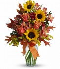 Warm Embrace from Boulevard Florist Wholesale Market
