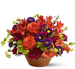 Autumn Celebration from Boulevard Florist Wholesale Market