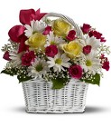 Daisy Dreams Basket from Boulevard Florist Wholesale Market