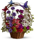 Basket of Butterflies from Boulevard Florist Wholesale Market