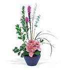 Orchid Cheer from Boulevard Florist Wholesale Market