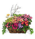 Deluxe European Garden Basket from Boulevard Florist Wholesale Market
