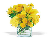 Sunshine Thoughts from Boulevard Florist Wholesale Market