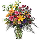 Every Day Counts from Boulevard Florist Wholesale Market