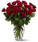 Two Dozen Red Roses from Boulevard Florist Wholesale Market