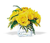 Yellow Rose Bravo! from Boulevard Florist Wholesale Market