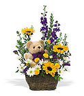New Baby Basket & Bear from Boulevard Florist Wholesale Market