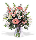 New Baby Girl Arrangement from Boulevard Florist Wholesale Market