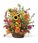 Majestic Fall from Boulevard Florist Wholesale Market
